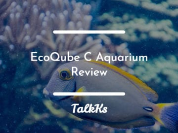 EcoQube Aquarium Review